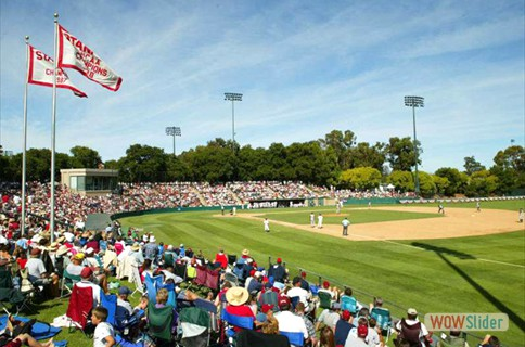 Prep for the 2019 season with Stanford Baseball Camps
